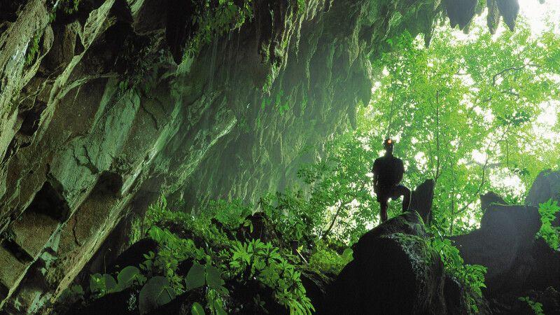 Höhleneingang im Mulu-Nationalpark im Bundesstaat Sarawak auf Borneo in Malaysia © Diamir