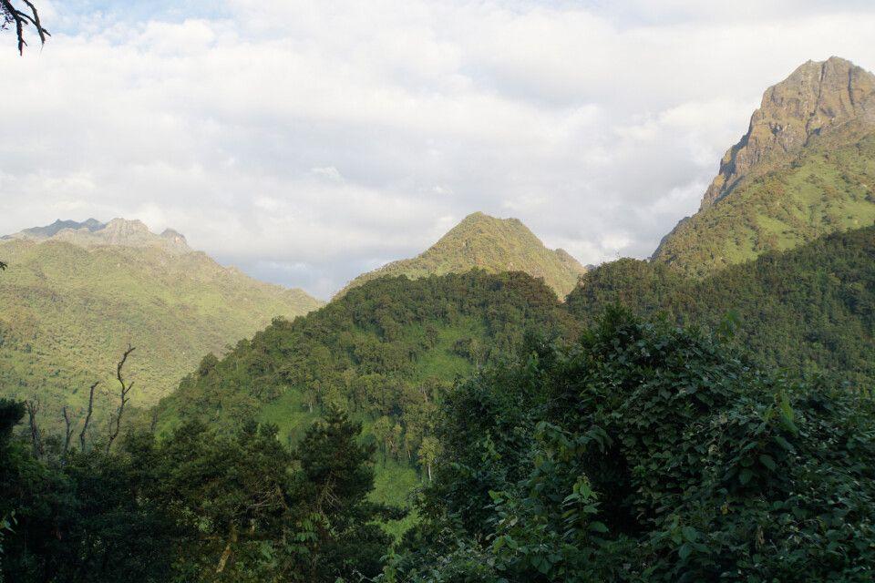Die wunderbare Landschaft der Ruwenzoris verzaubert jeden Trekkingfan.
