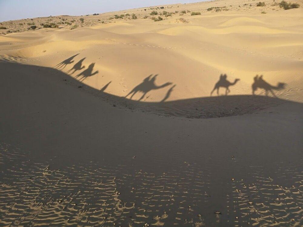 Rajasthan Reise – Wüste Thar