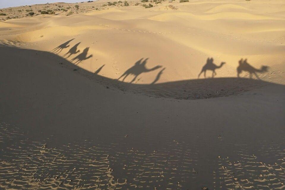 Rajasthan Reise -  Wüste Thar