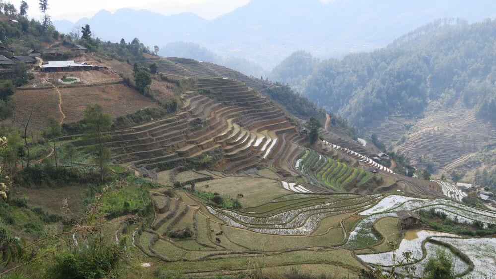 Mu Cang Chai – Terassenfeldbau in den Bergen