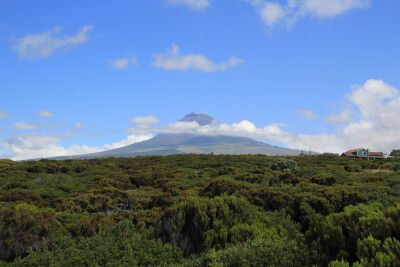Blick auf den Pico