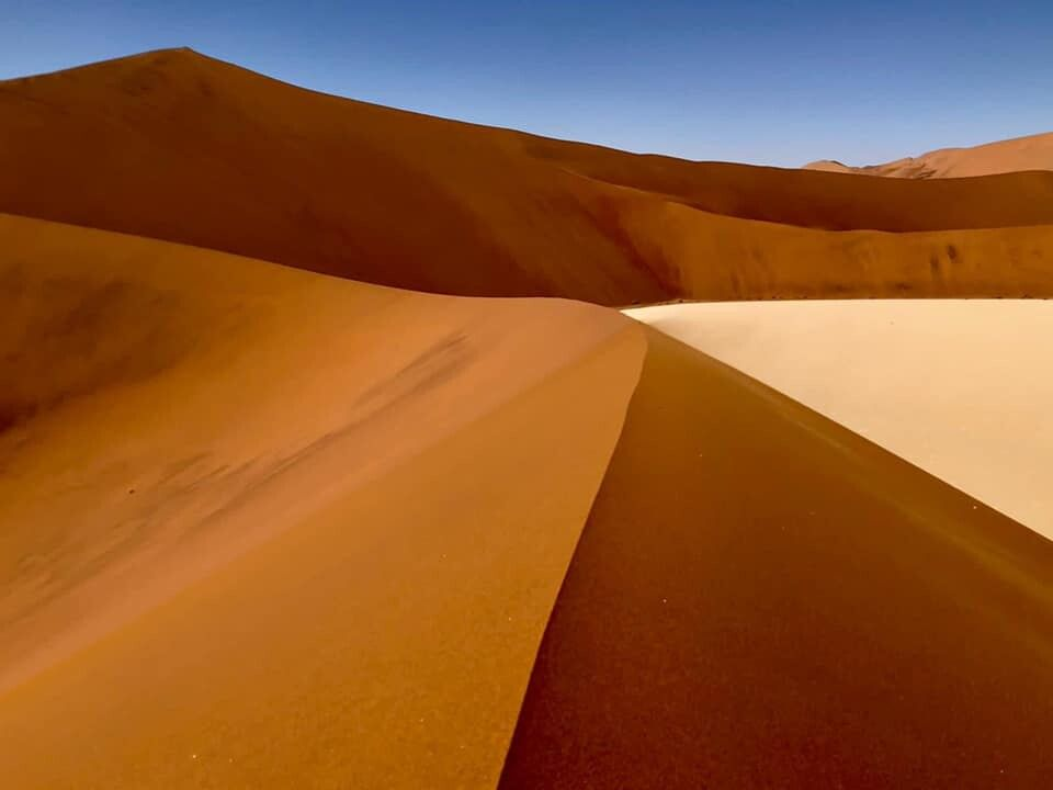 In der Namib-Wüste