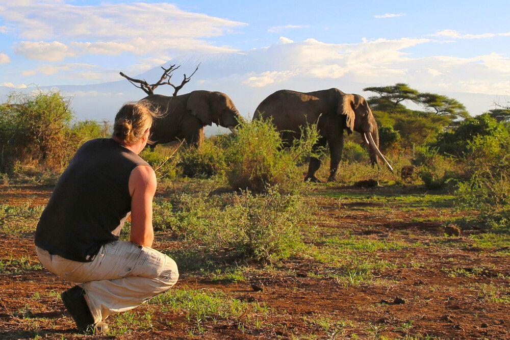 Friedliche Begegnung mit dem größten Landsäugetier unserer Erde