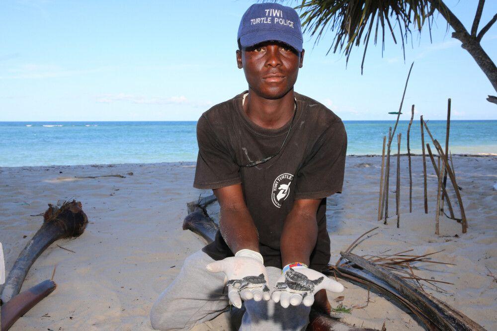 Schildkrötenschutzprojekt an der Coconut Beach Lodge