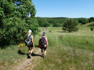 Wandern im Mols-Bjerge-Nationalpark
