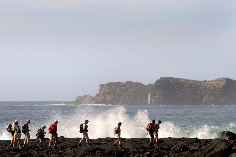 Wanderer an der Küste von Pico, Azoren