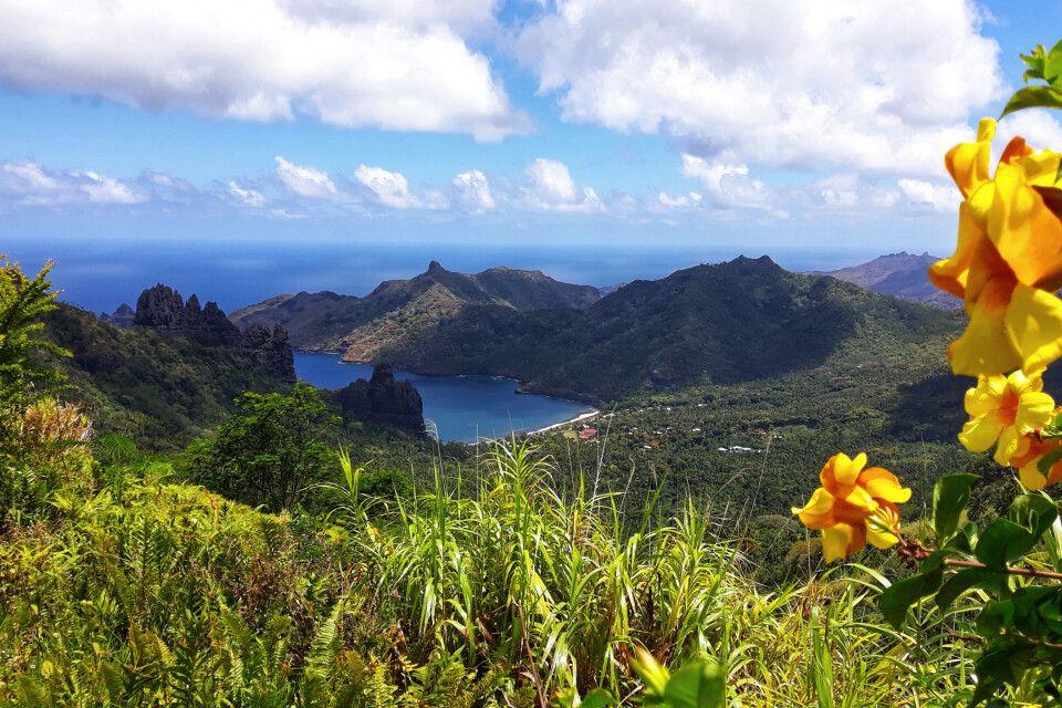Blick über eine Insel