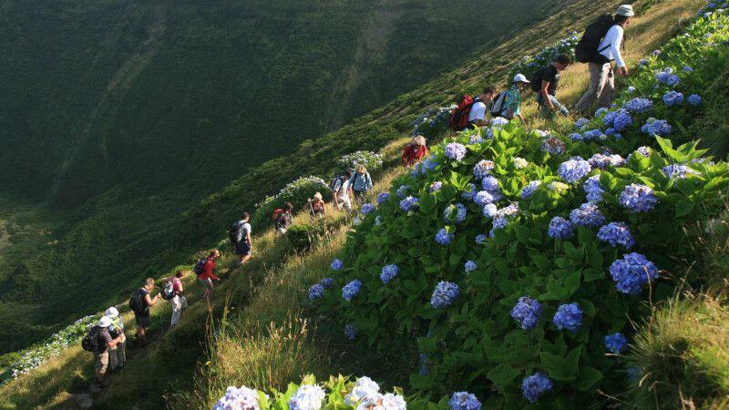 Wanderer auf Faial © Diamir