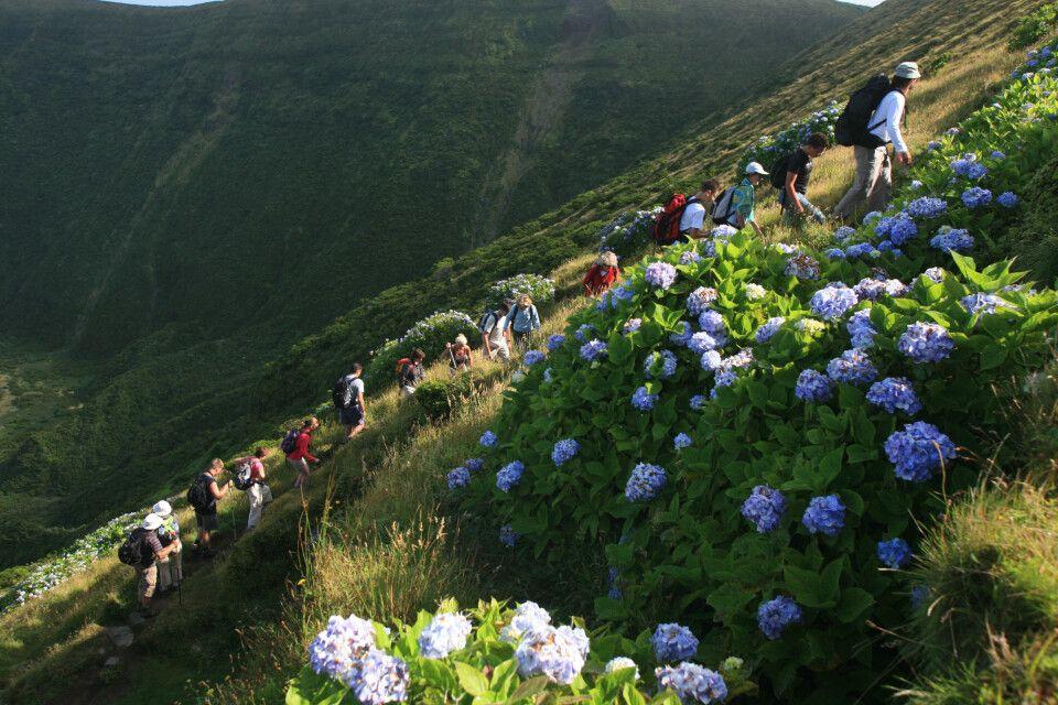 Wanderer auf Faial