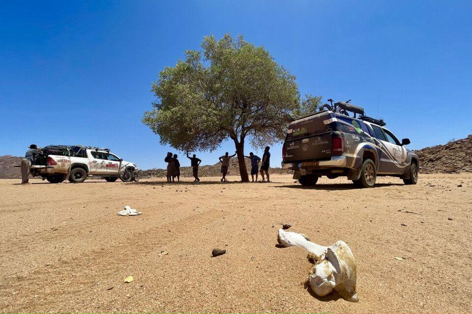 Mittagsrast in den Weiten Namibias
