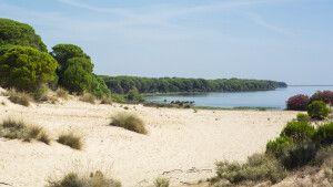 Strand im Doñana-Nationalpark, Costa de la Luz