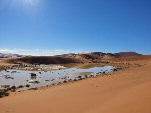 Unterwegs in der Namib