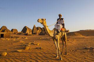 Sudanese auf seinem Kamel