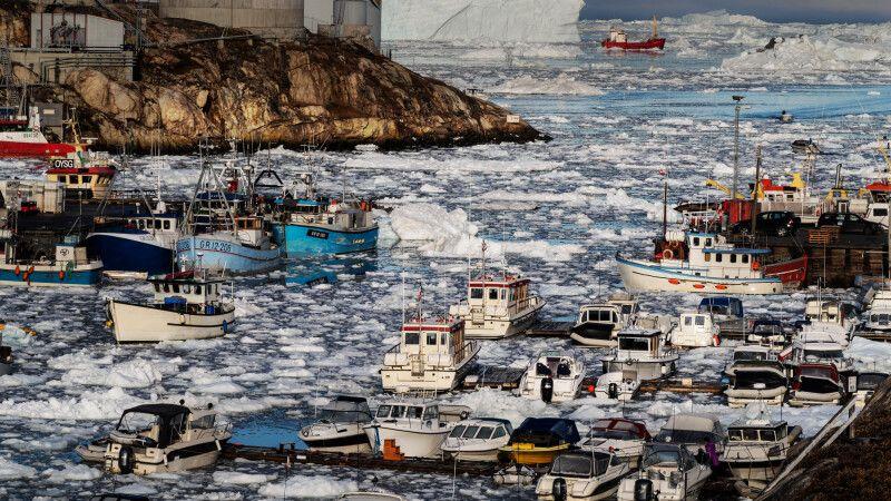 Blick auf den Hafen von Ilulissat  © Diamir