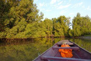 Bootsfahrt in den Bolons