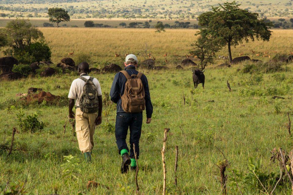 Wandersafari im Kidepo-Nationalpark