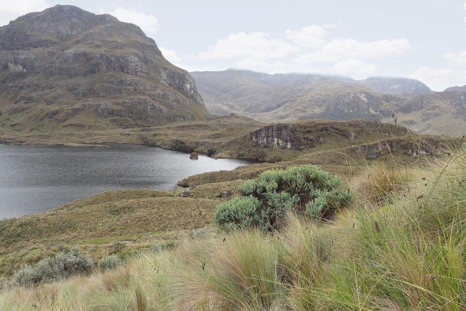 Nationalpark El Cajas