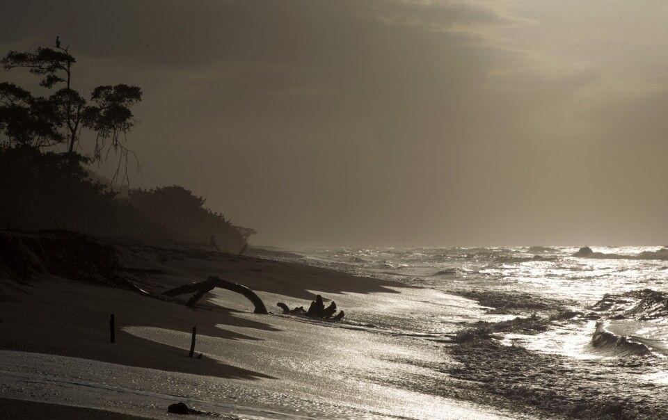 Palomino Strand an der Karibikküste