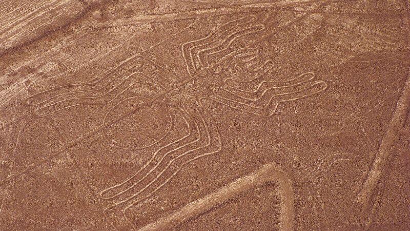 Nazca-Linien: Die Spinne © Diamir
