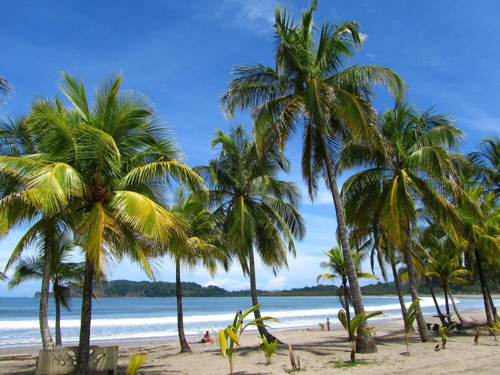 Vorbeifahrt an der Playa Carillo