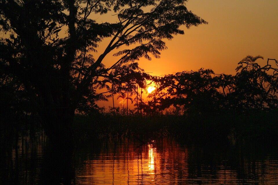 Sonnenuntergang im Regenwald