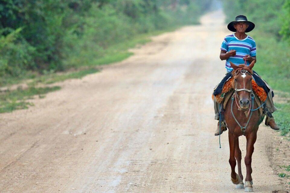 Einsamer Reiter