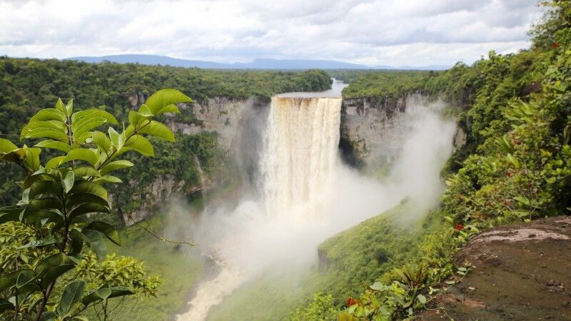 Kaieteur-Wasserfälle des Potaro-Flusses in Guyana © Diamir