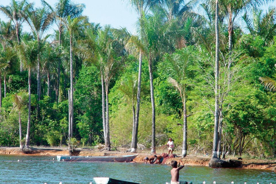 Einbaum auf dem Amazonas