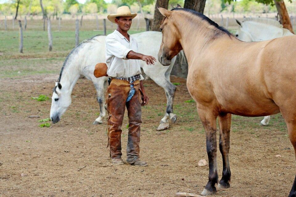 Auf einer Pferderanch
